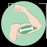 Muscle&Bone
